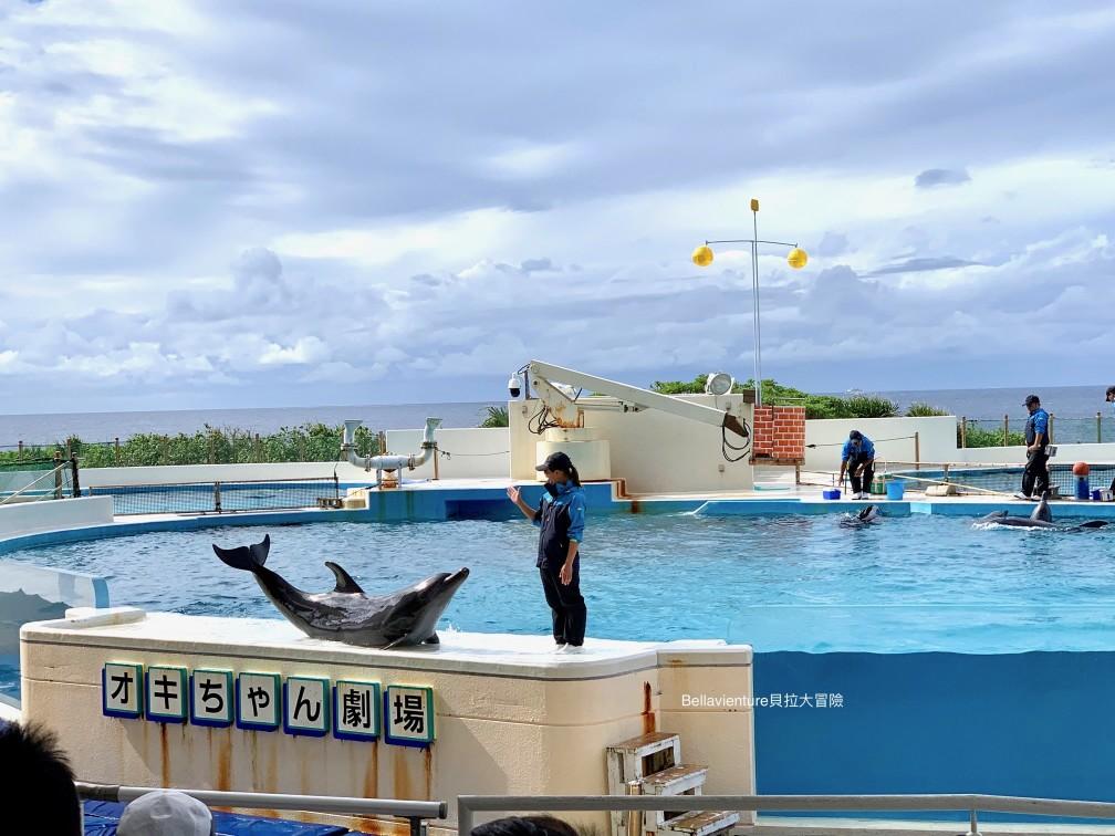 オキちゃん劇場 沖繩 美麗海水族館 海豚秀