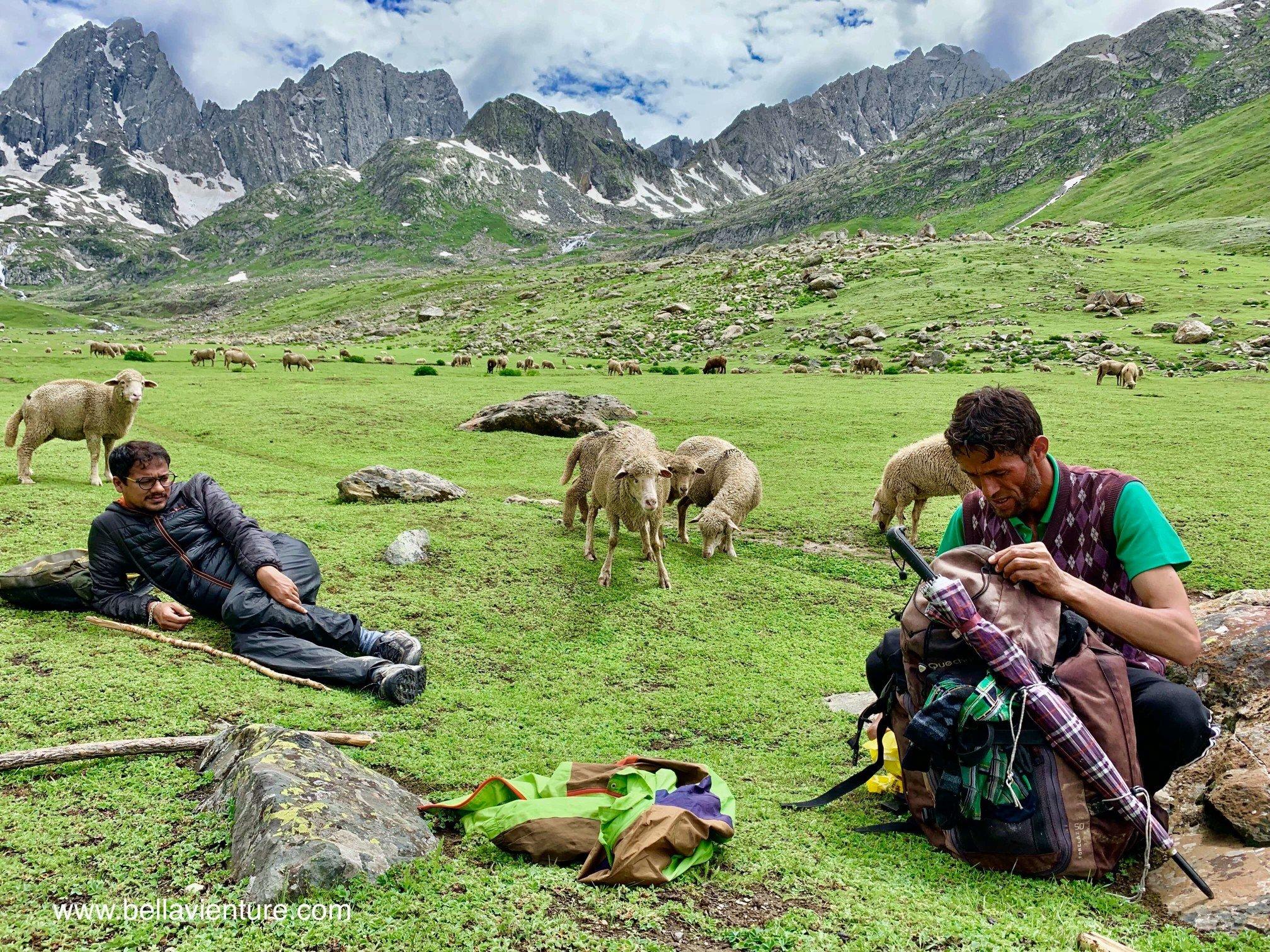 印度 India 北北印 North India 喀什米爾  Kashmir 八天七夜 健行 與導遊午休