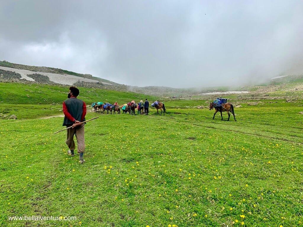 印度 India 北北印  North India 喀什米爾 Kashmir 大湖健行 trekking Kashmir Great Lakes Trek 越過草原