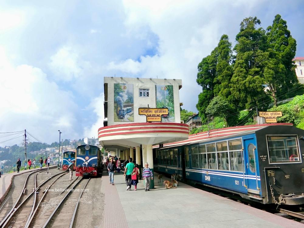 印度 大吉嶺 大吉嶺喜馬拉雅鐵路Darjeeling Mountain Railway 玩具火車Toy train