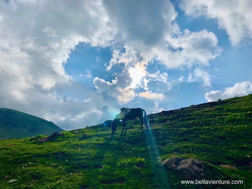 印度 india 喀什米爾 kashmir 大湖健行big lake treakking 美麗的山景
