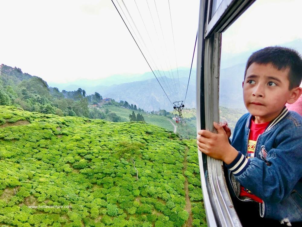 印度 大吉嶺 Darjeeling Rangeet Valley Passenger Ropeway 纜車 尼泊爾弟弟
