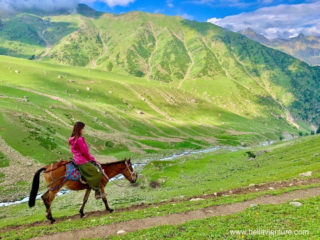印度 india 喀什米爾 kashmir 大湖健行big lake treakking 馬兒與美麗的山景
