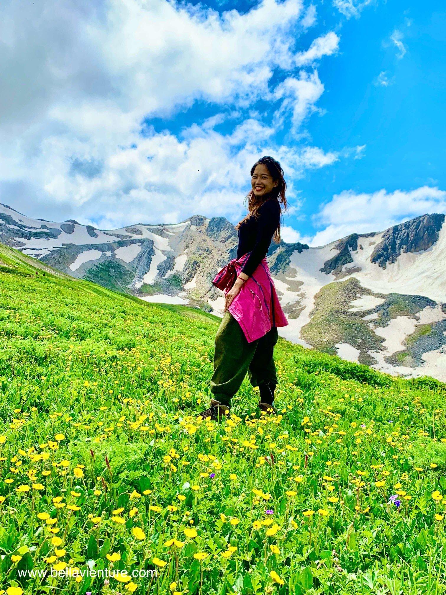 印度India 北北印 North India 喀什米爾 Kashmir 大湖健行 trekking 黃花