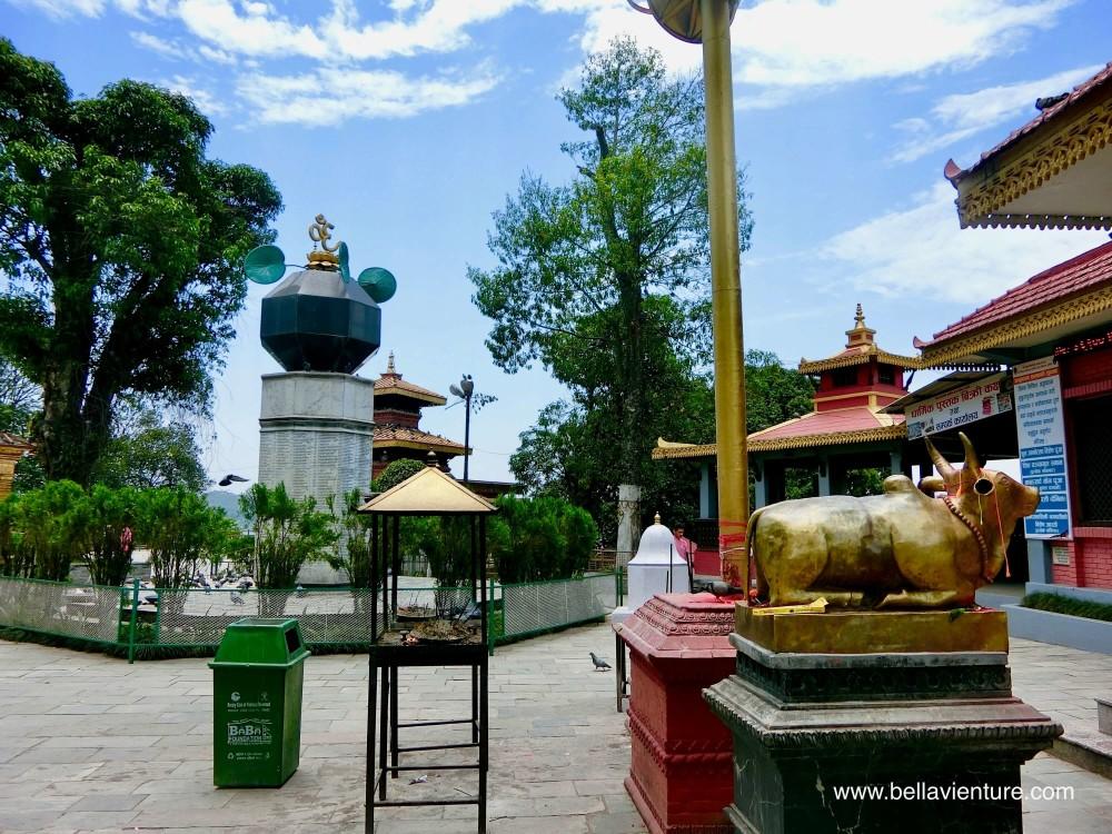尼泊爾 波卡拉 印度廟