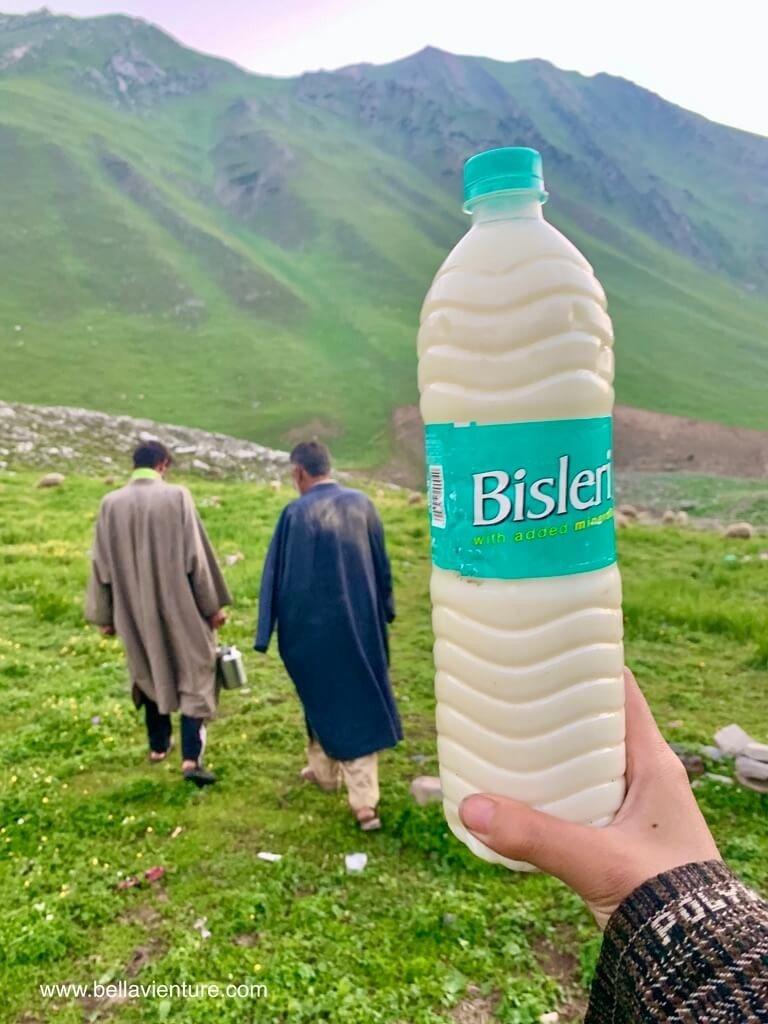 印度India 北北印 North India 喀什米爾 Kashmir 大湖健行 trekking 新鮮牛奶