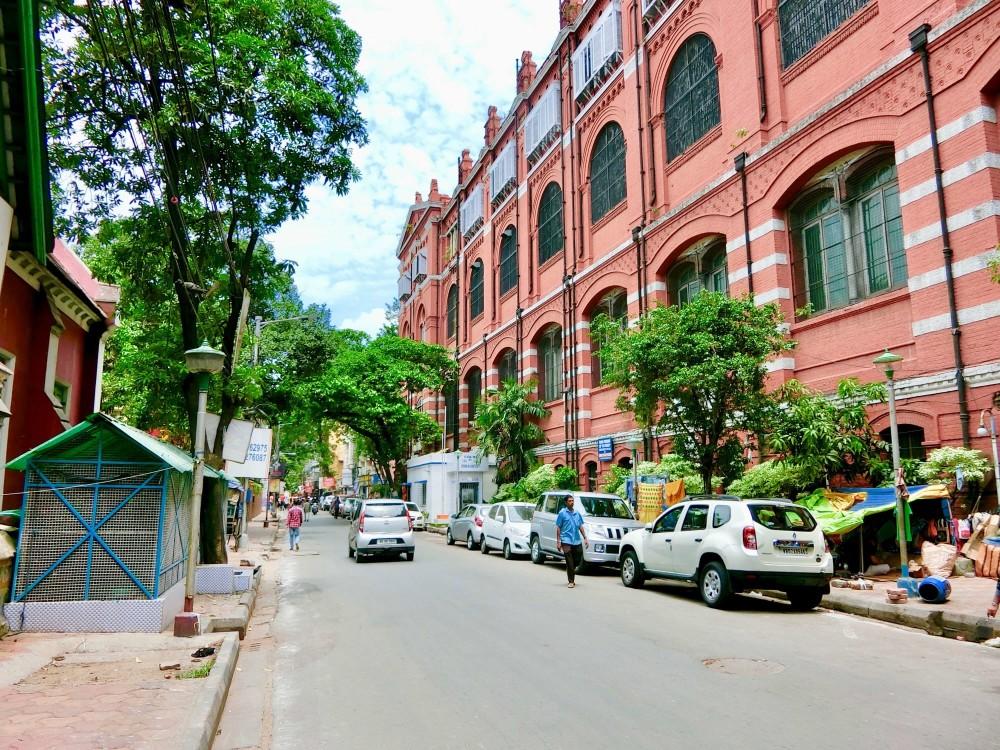 印度 加爾各答 印度博物館 Sudder st.