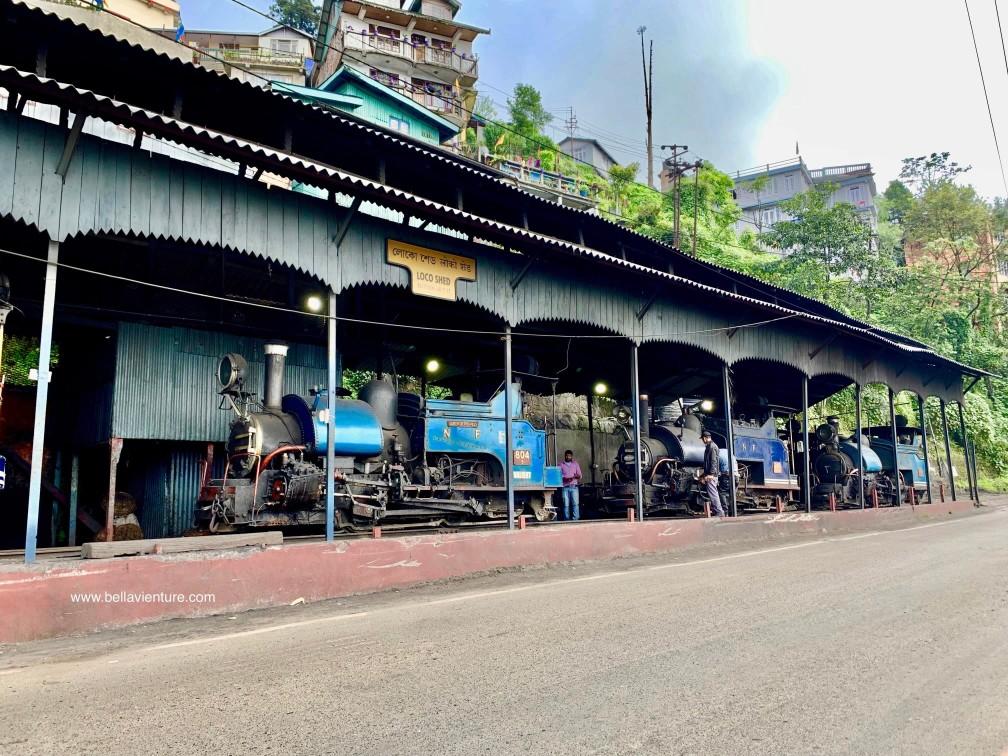 印度 大吉嶺 大吉嶺喜馬拉雅鐵路Darjeeling Mountain Railway的玩具火車Toy train