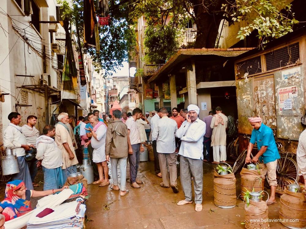 印度india 瓦拉納西 varanasi 牛奶街