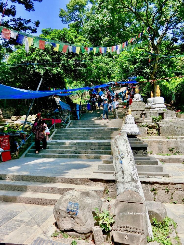 斯瓦揚布納特佛寺Swayambhunath猴廟 monkey temple