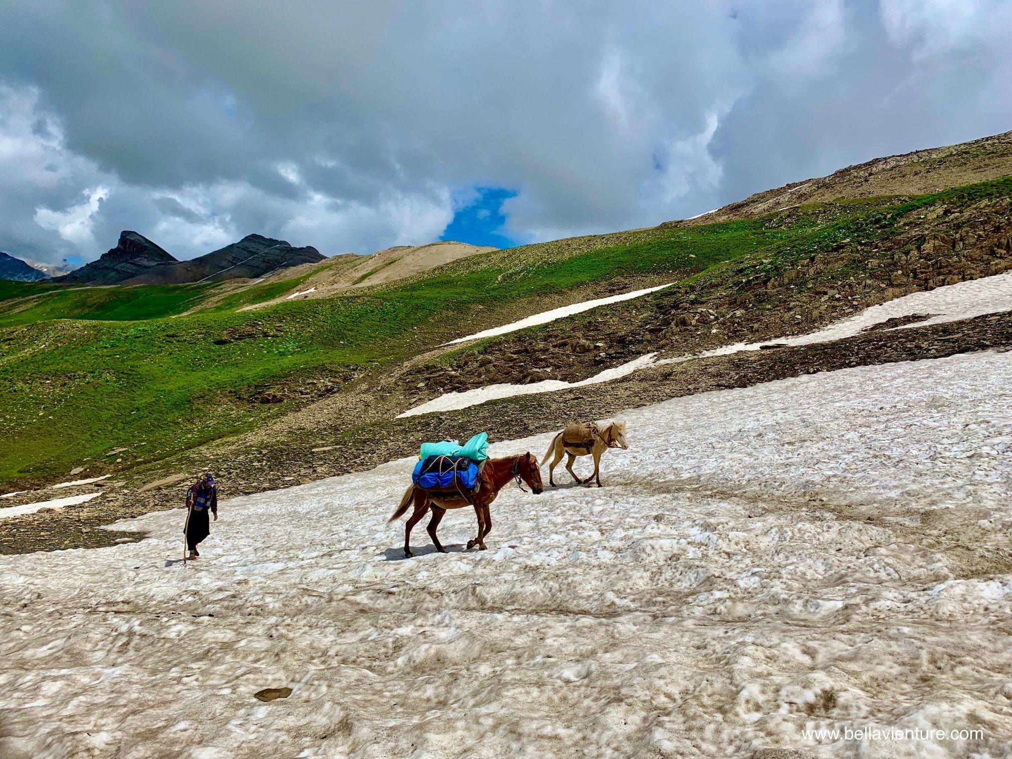 印度 India 北北印 North India 喀什米爾  Kashmir 八天七夜 健行 大自然 馬匹 運送物資