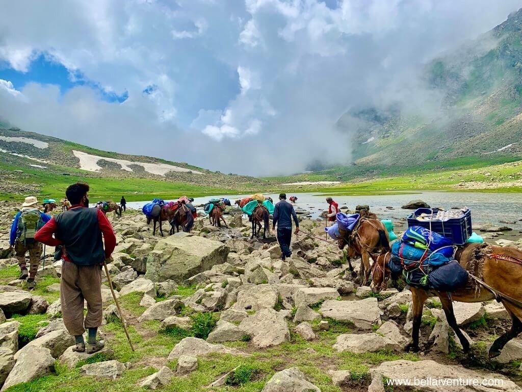 印度 India 北北印  North India 喀什米爾 Kashmir 大湖健行 trekking Kashmir Great Lakes Trek 馬匹過河