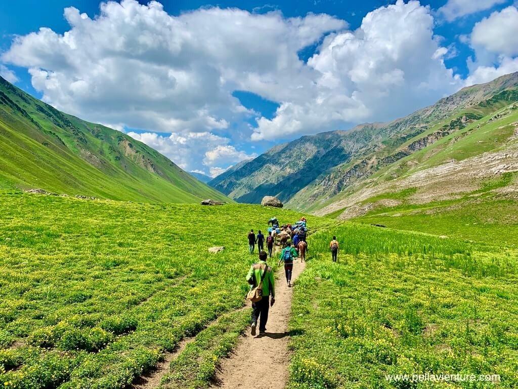印度India 北北印 North India 喀什米爾 Kashmir 大湖健行 trekking 黃花群