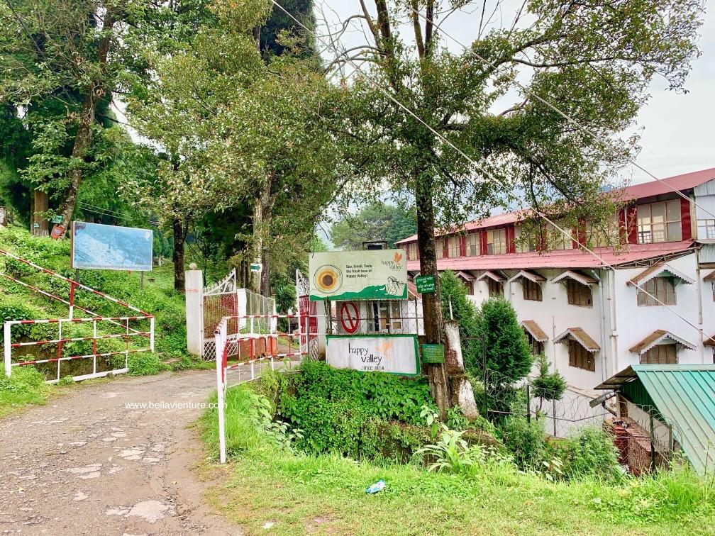 印度 大吉嶺 快樂谷紅茶園區 Happy Valley darjeeling