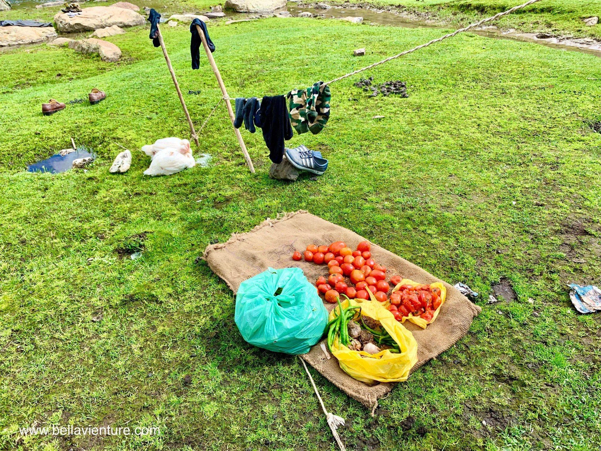 印度 India 北北印 North India 喀什米爾  Kashmir 八天七夜 健行 日光浴的番茄與土雞