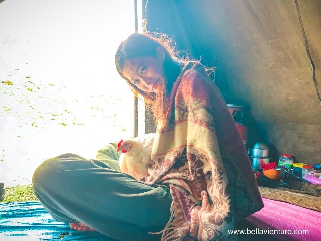 印度 india 喀什米爾 kashmir 大湖健行big lake treakking  與母雞的早晨