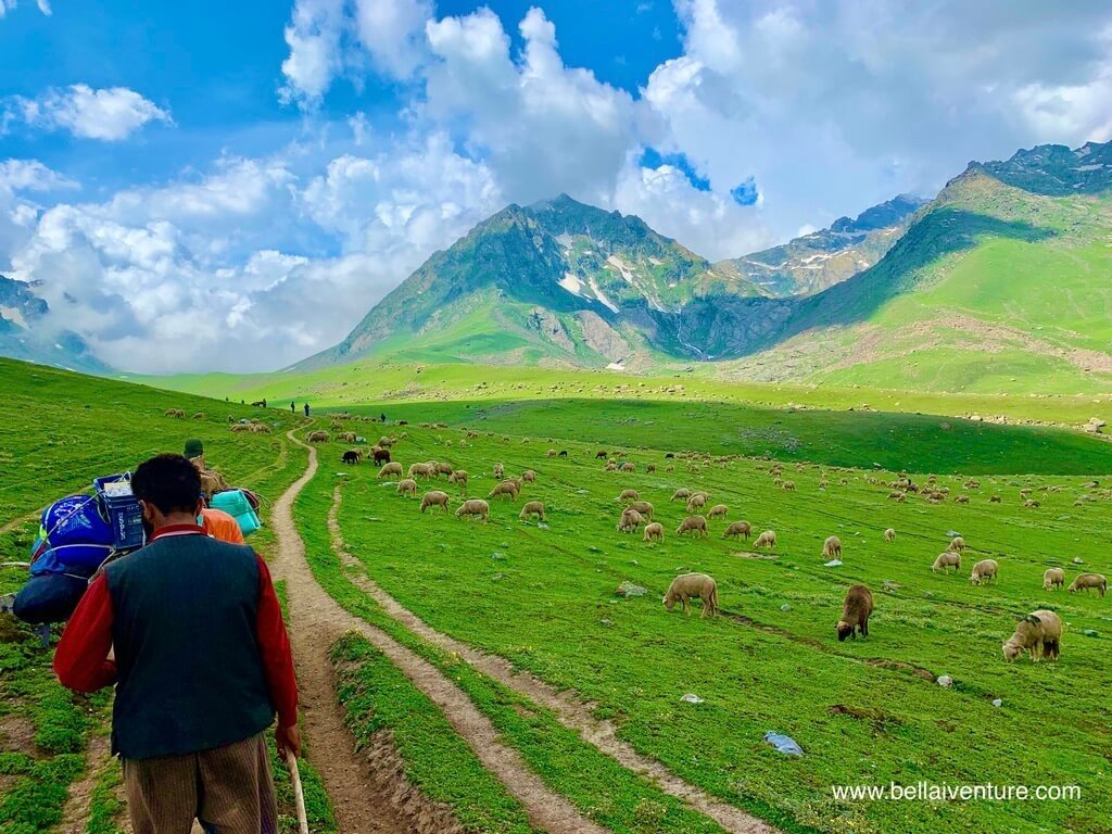 印度 India 北北印  North India 喀什米爾 Kashmir 大湖健行 trekking Kashmir Great Lakes Trek 牧羊人 廚師