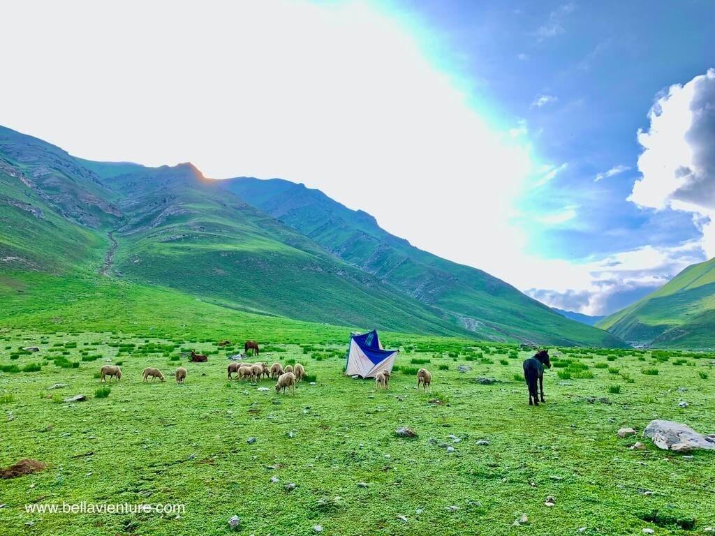 印度 India 北北印  North India 喀什米爾 Kashmir 大湖健行 trekking Kashmir Great Lakes Trek 清晨起床