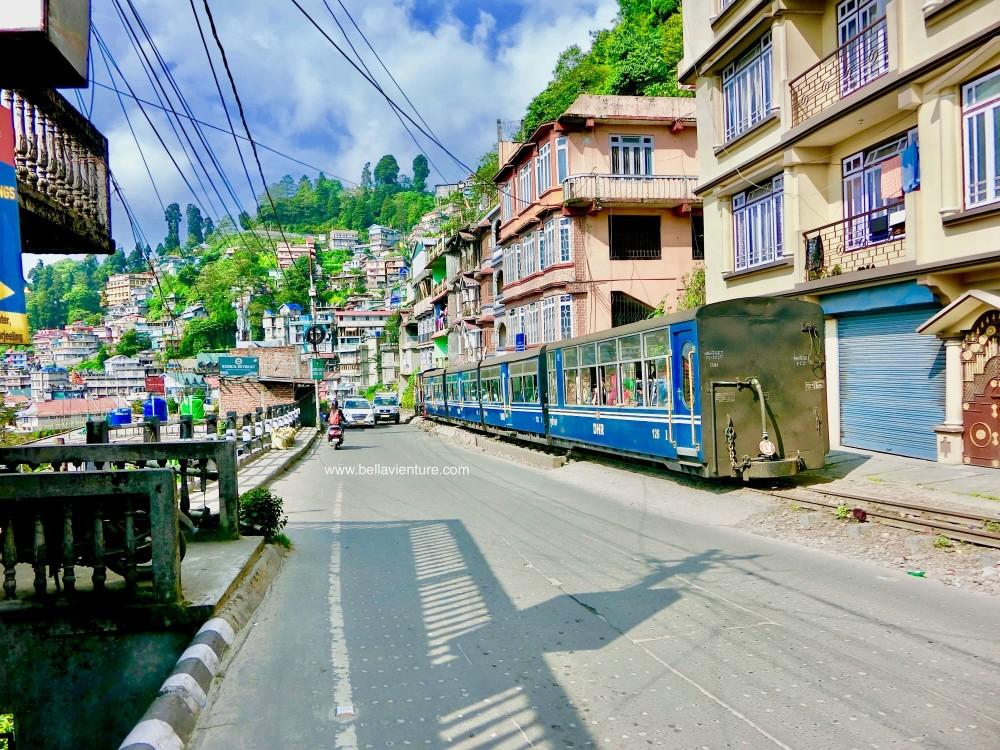 印度 大吉嶺 蒸汽小火車 toy train
