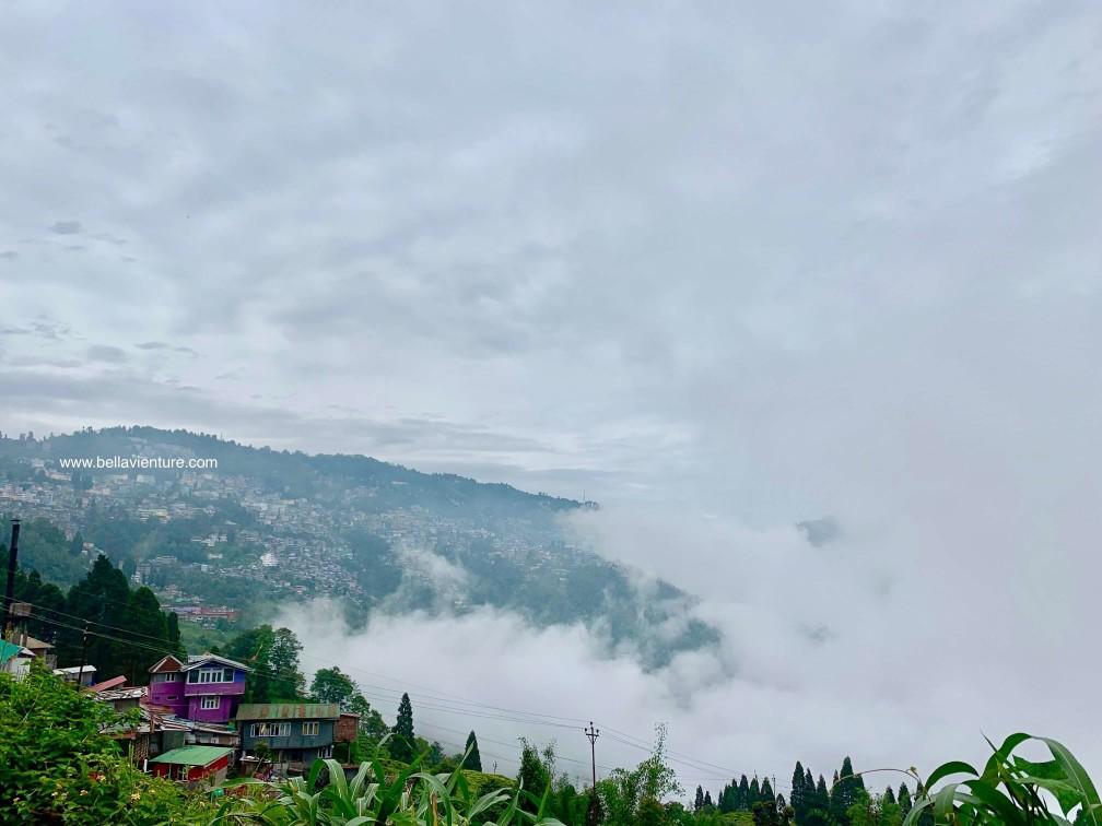 印度 大吉嶺 雲海