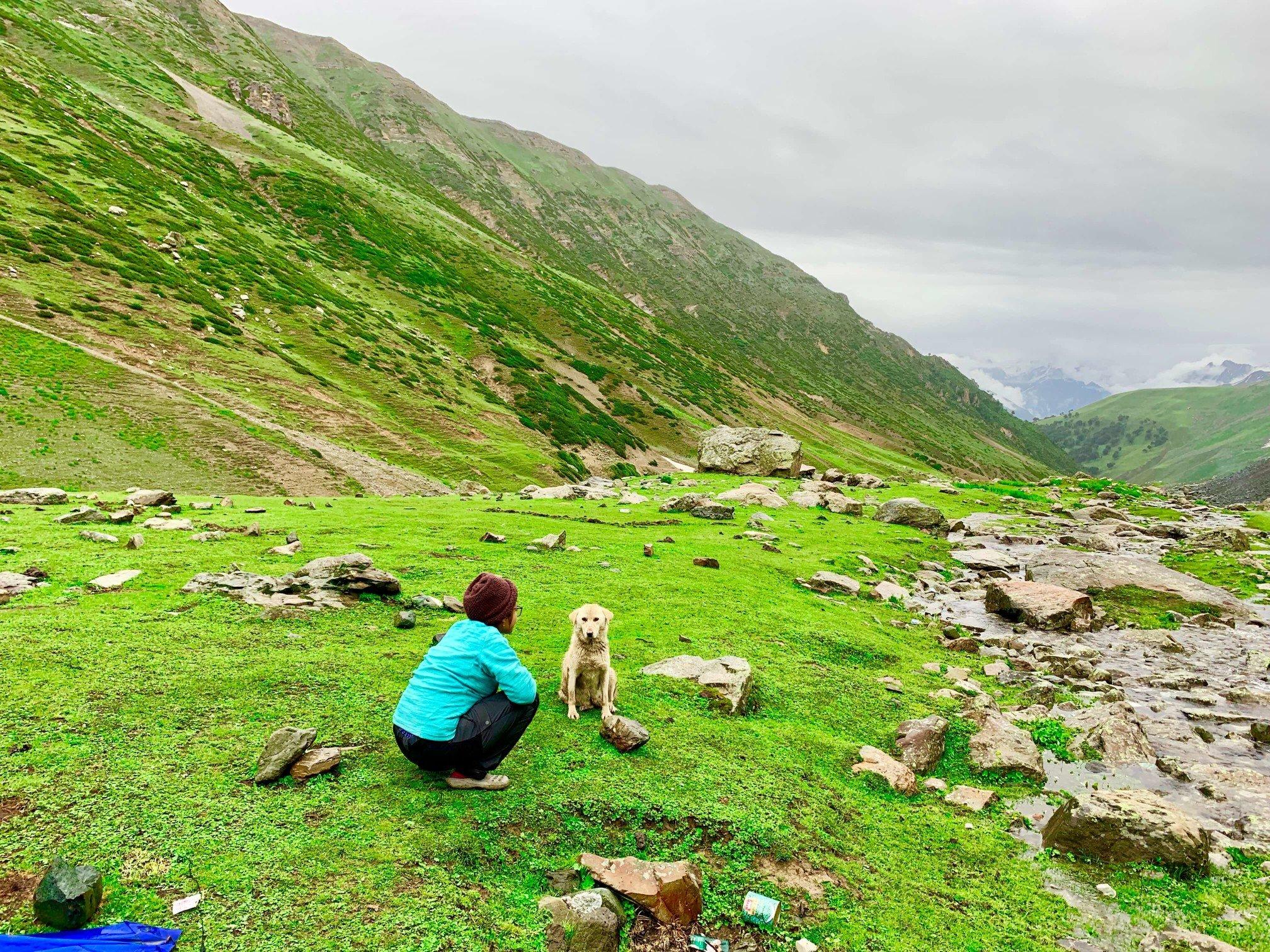 印度 India  喀什米爾 Kashmir  北北印 North India 八天七夜健行 大自然 dog