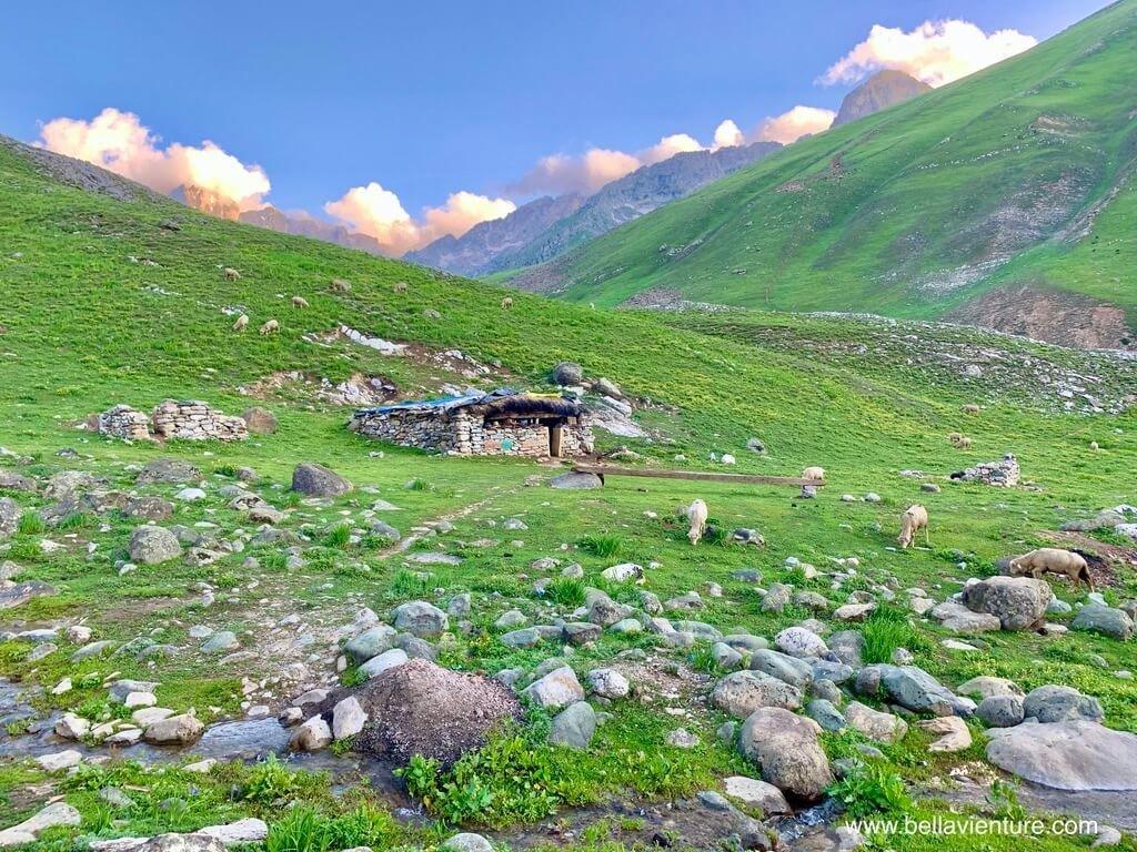 印度India 北北印 North India 喀什米爾 Kashmir 大湖健行 trekking 牧羊人家中作客