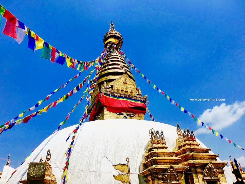 【印度】21天秒決定到印度兩個月!尼泊爾(三)Day9 加德滿都-猴廟.杜巴廣場.活女神