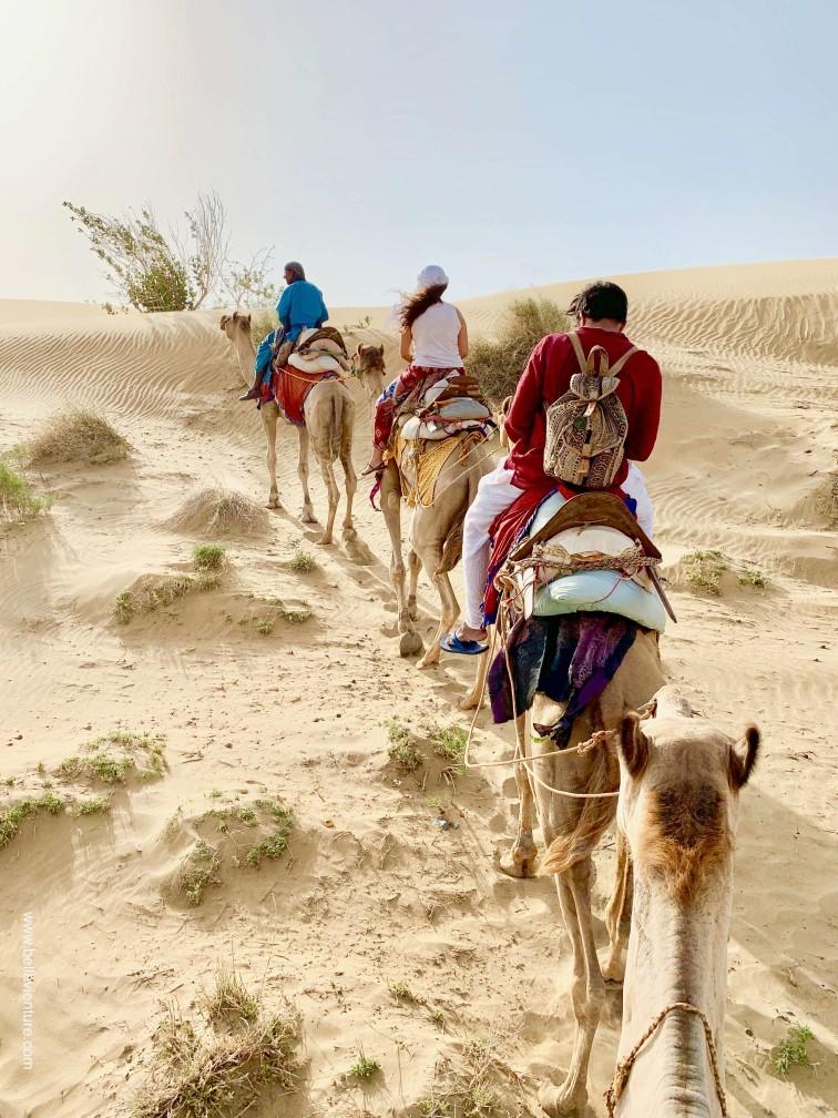 印度 india 賈莎梅爾 jaisalmer 沙漠 desert 駱駝 camel safari