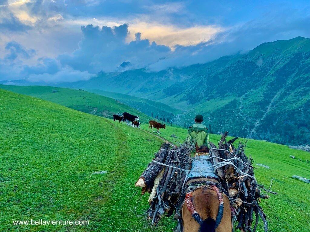 印度 india 喀什米爾 kashmir 大湖健行big lake trekking 傍晚天空與搬柴之馬兒