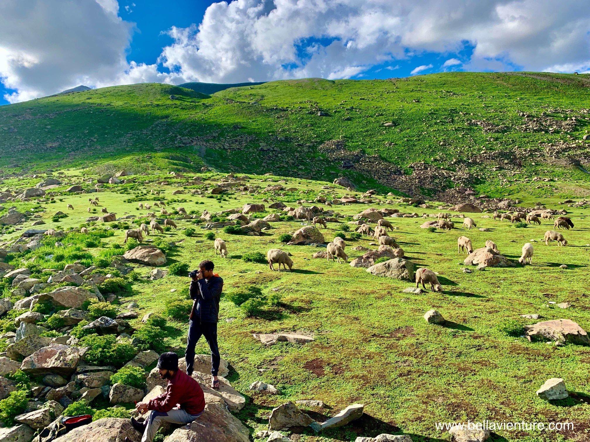 印度 India 北北印 North India 喀什米爾  Kashmir 八天七夜 健行 Nichnai Valley 聖湖