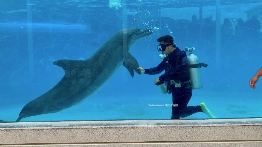 オキちゃん劇場 海豚秀 沖繩 美麗海水族館