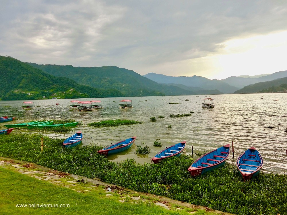 尼泊爾 波卡拉 Nepal Pokhara  Phewa lake 湖景