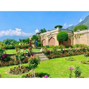 【印度】21天秒決定到印度兩個月!喀什米爾(十二)Day59 封城前夕的蒙兀兒花園