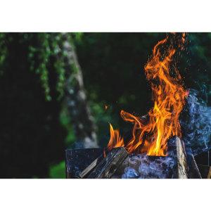 【The Spirit】從植物領悟到的大靈之愛-儀式/死藤水/相思湯臣服之旅(5/5)