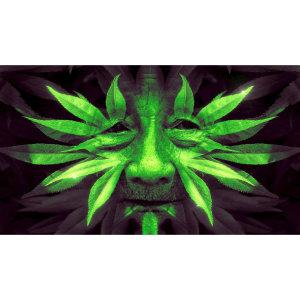 【THE SPIRIT】從植物領悟到的大靈之愛-儀式/死藤水/相思湯臣服之旅(2/5)