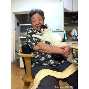 【家庭】清子樣,您好嗎?(獻給已經變成天使的日本外婆)
